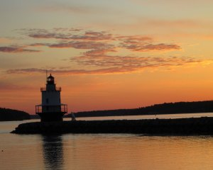 spring point light 521