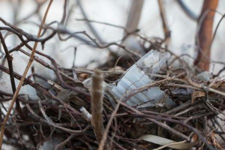 recycled-nest